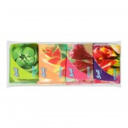 SCOTT 2ply Facial Tissue Pocket Pack 16x8sheets