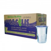 Cactus Mineral Water 230ml x 48